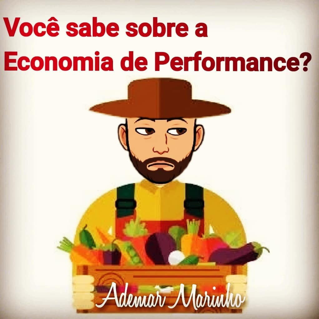 Economia de Performance Marketing Multinivel